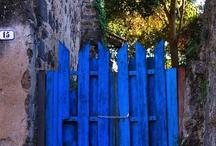 my backyard / by Haley Williams   The Yellow Peony