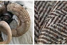 Texture Shape Pattern