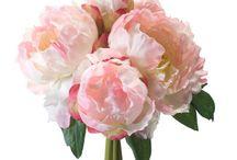 De Mooiste Bloemen
