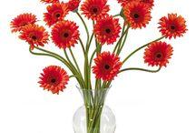FlowerWYZ Flowers Delivery