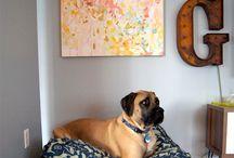 Dog Bed Ideas
