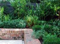 Walls / Retaining walls and garden edging