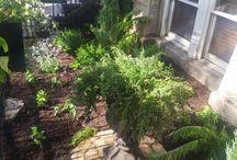 Haven Gardening