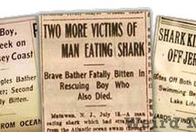 The Real Story of Jaws / The mysterious happenings of the shark attacks during the summer of 1916 on the Jersey Shore, including Matawan Creek. / by Library07747