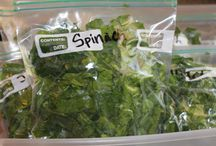 Spinach & other Leafy Lettuces