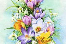 картинки-цветы2