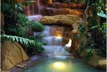 Ponds & Waterfalls / by Sandy Giannini