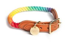 Luxury Dog Collars / Browse our stylish selection of high quality luxury dog collars, including geniune leather and designer dog collars, made to make your dogs and puppies look good.