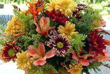 virágok-Flowers