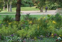 Parc Micaud # Micaud Park, Besançon's city