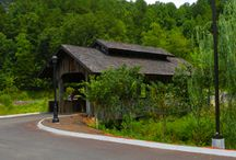 Covered Bridge in the Glades / by Hidden Springs Resort