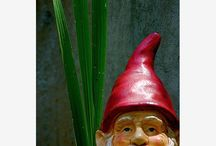 oh gnome u didnt / by Lisa Wandell