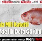 600 Deniz Mili Katetti Türkiye'de İlk Defa Görüldü