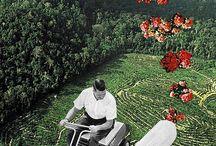 Collage Nicolage / by Pamela Macko