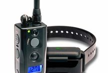 Dogtra Electronics / Need training electronics for your dog?  Dogtra has been recommended by trainers all over the world.  Check out the top Dogtra electronics!