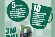 Horsey infographics / Fun #infographics with a horsey or equestrian theme