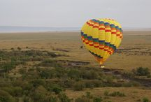 Adventures Aloft Balloon Safaris Masai Mara / since 1997 Adventures aloft has been creating memorable balloon safaris in the Masai Mara National park, with A-415 sixteen seater and A-315 twelve seater  is now flying a capacity of 108 clients each day,Balloon take off typically at 6.30am every morning.  It has highly experienced pilots and a perfect safety record up to date.