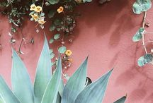 tropical beach wedding soft tones & pink