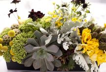 Thoughts of #Floral / ideas for #floral arrangements for #events and #weddings / by Belle'Ham Wedding & Events