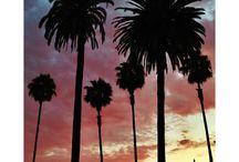 Love LA !