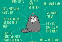 National Cat Day  / October 29th is #NationalCatDay! Here are a few meowvelous ways to celebrate.