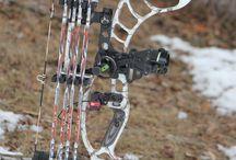 bows & arrow
