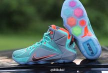 lebron james xii