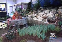 How does your Garden Grow? / Garden pictures and Ideas / by wcnc