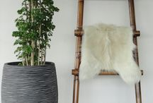 Bamboe / Bamboe en rotan meubels