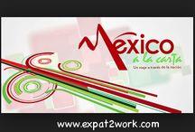 Le Mexique en toute connaissance de cause / La toute première newsletter de Expat2work vient d'arriver dans votre boîte mails ! Pour être au top de l´information sur l´expatriation au Mexique et avoir une longueur d´avance dans la connaissance de ce pays, inscrivez-vous directement sur le site http://www.expat2work.com/  A très vite, pour vous accompagner dans cette belle aventure !