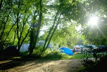Camping / by Kyle McDermid