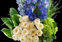 Delphinium bouquets