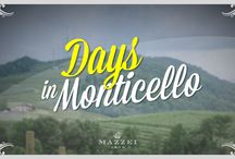 Days in Monticello