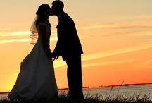 My Wedding / by Rachel Ritz