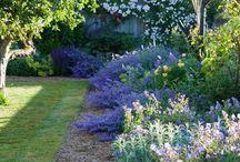Jardín de ensueño