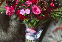 Kvety,rastliny / Kvety