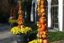 Floristik Herbst