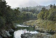 New Zealand landscapes / by Chloe Sy-Ball