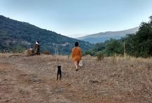 Entorno Casa Rural Tai
