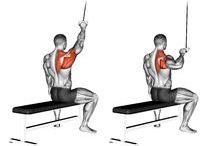 Fitness Rücken