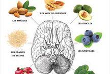 Meilleur Aliments pour le Cerveau