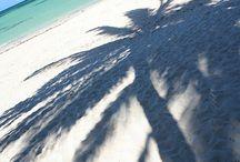 California, beach, others
