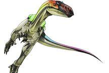 Paleontology Art and Design