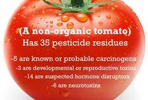 GMO's Exposed / by Casey Mercado