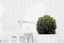 white / by The Novogratz