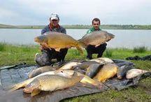Pescuit și vânătoare.