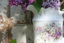 Lilacs -My Favorite