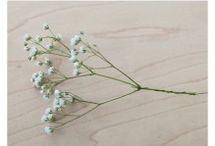 DIY Fleurs Mariage / by Caroline Alix