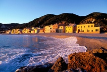 poem for April 29 or news to bear / 1 Mai est un ´lieu de memoire´. 1 Mai , alerte à l´imposture El Dia del trabajador y de la precariedad La crise é un romanzo horror. Vado in Liguria by night in Riviera, la California dreamming italiana While aging Japan eyes Indian youth While video captures Calif hit-and-run, leading to arrest While a wife of Secret Service agent stands by her man   / by News Poetry