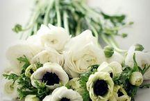 Bloemen bloemen bloemen!!!